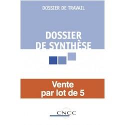 Dossier de synthèse - par lot de 5